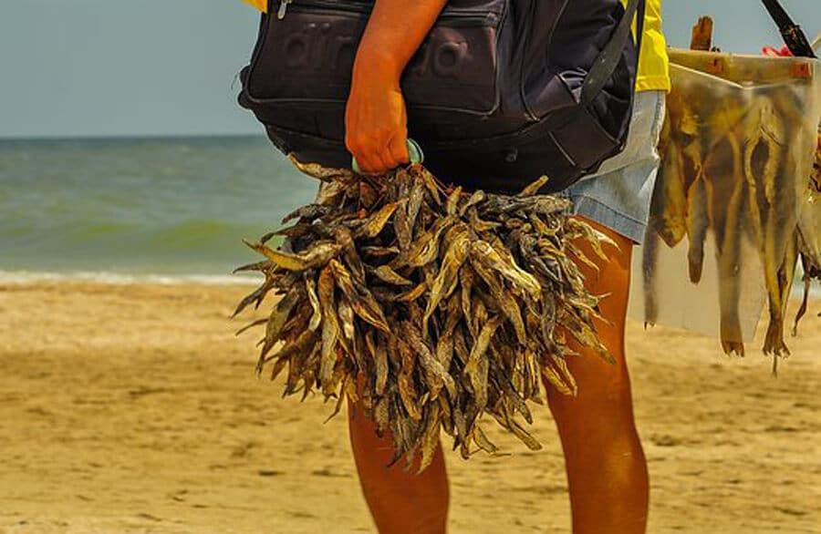 beach-2549769__340